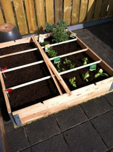 One square metre garden